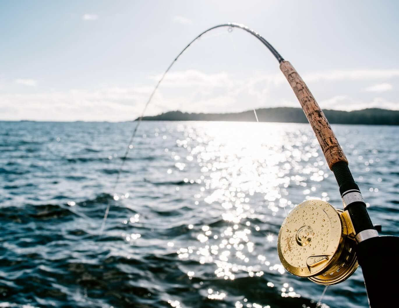 June fishing report wardowest for British columbia fishing
