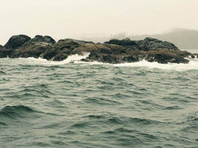 May 2016 Fishing Report - Tofino British Columbia
