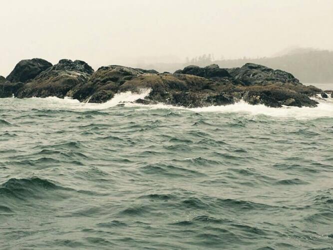 May 2016 Fishing Report - Tofino British Columbia