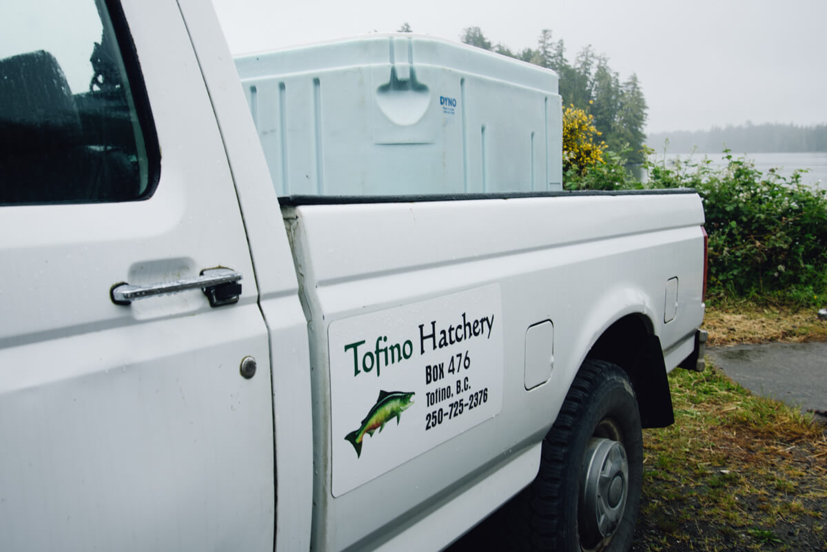 Tofino Fish Hatchery - Truck